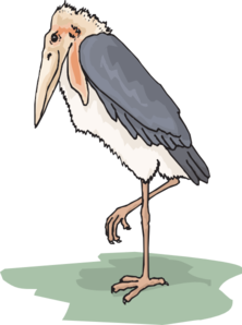Marabou Stork Clip Art at Clker.com.