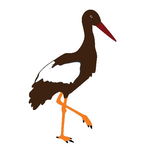 Marabou Stork Clipart.