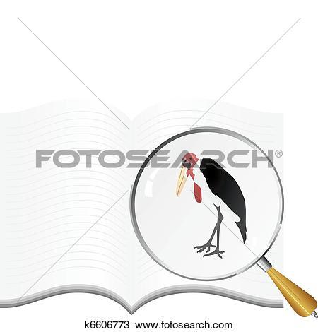 Clipart of vectors marabou k6606773.