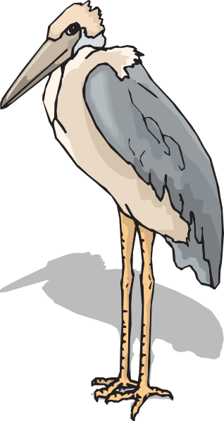 Marabou Stork Clip Art at Clker.com.