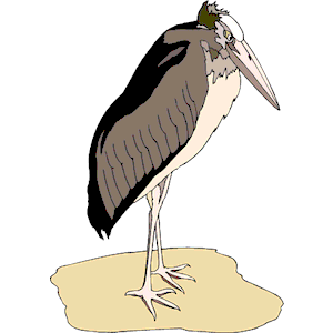 Marabou Stork 4 clipart, cliparts of Marabou Stork 4 free download.