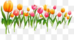 March Flowers PNG.
