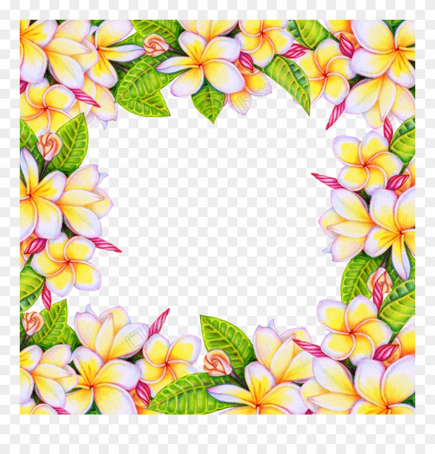 Flower Background Png.