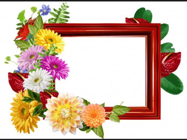 marcos de fotos de flores.