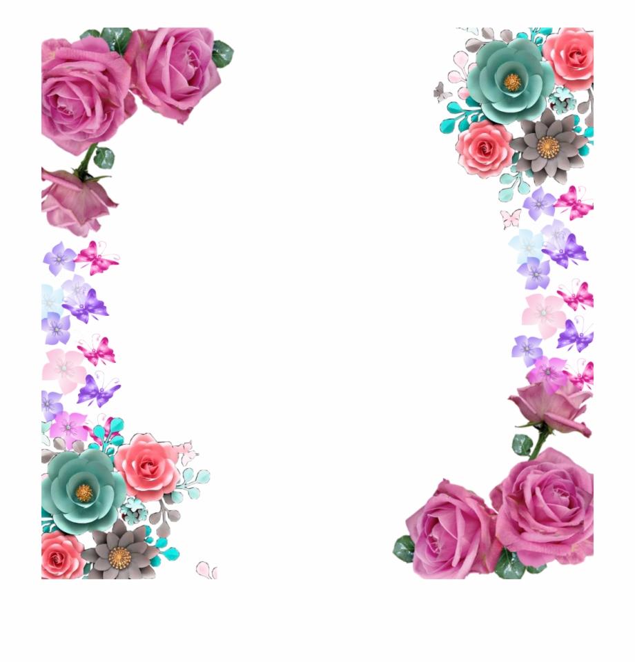 mariposas #marco #flores #rosas #rosa.