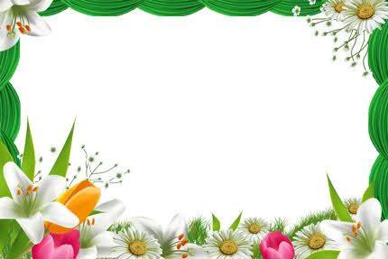 Marcos de flores para Photoshop.