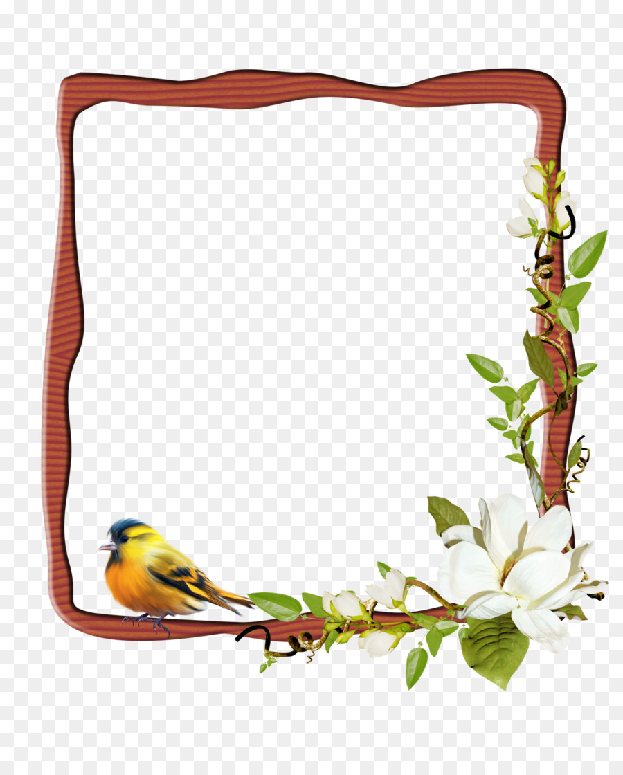 Flower Background Frame png download.