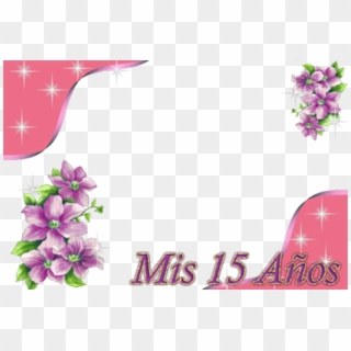 Free Mis 15 Png Transparent Images.