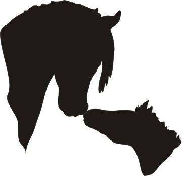 Free horse foal silhouette clipart.