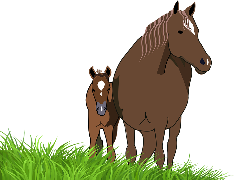 Free vector graphic: Foal, Mare, Horse, Animal.