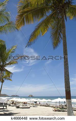 Pictures of Beach Margarita Island k4666448.