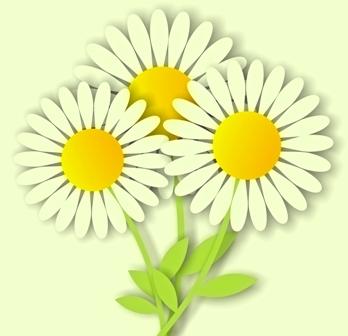 lo spazio di lilla: Profumo di PrimaveraSbocciano le margherite!.