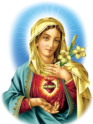 Sagrado coração de maria png » PNG Image.
