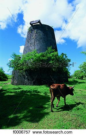 Picture of French West Indies, Guadeloupe, old mill on Marie.