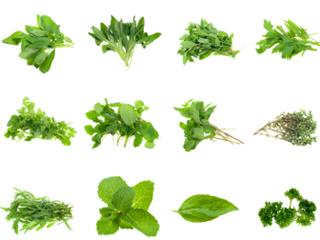 Herb flan.