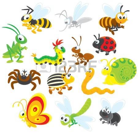 Ladybird Larva Stock Photos Images. Royalty Free Ladybird Larva.
