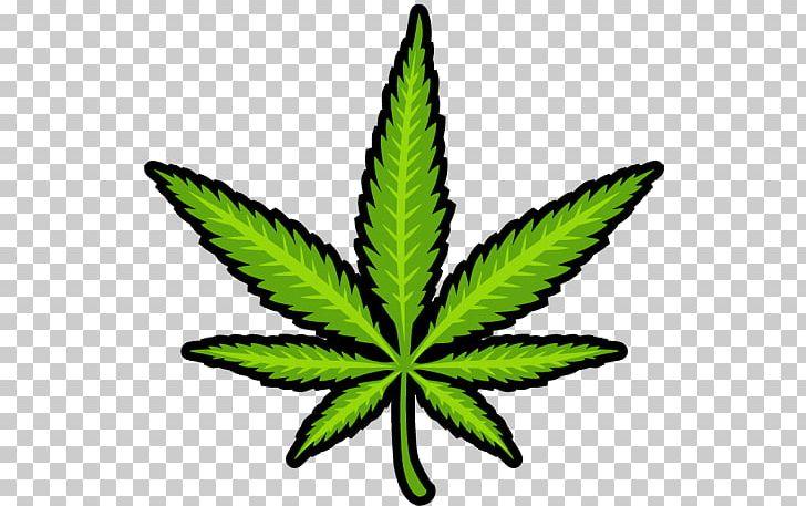 Medical Cannabis Marijuana PNG, Clipart, Cannabis, Cannabis.