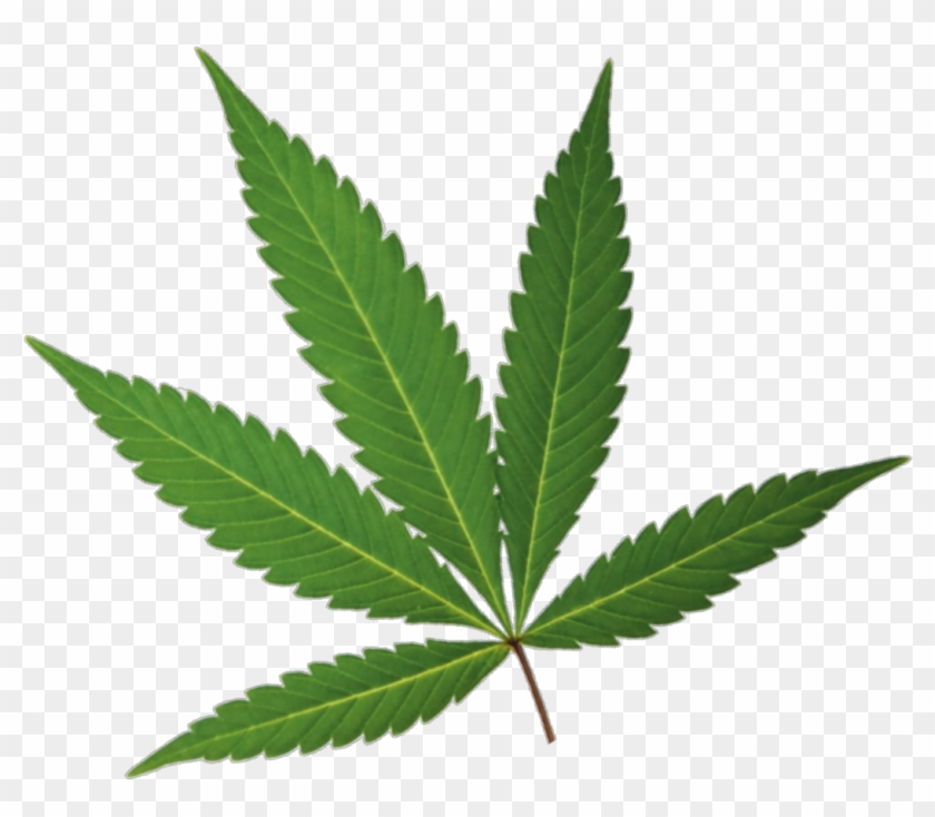 Marijuana Leaf.