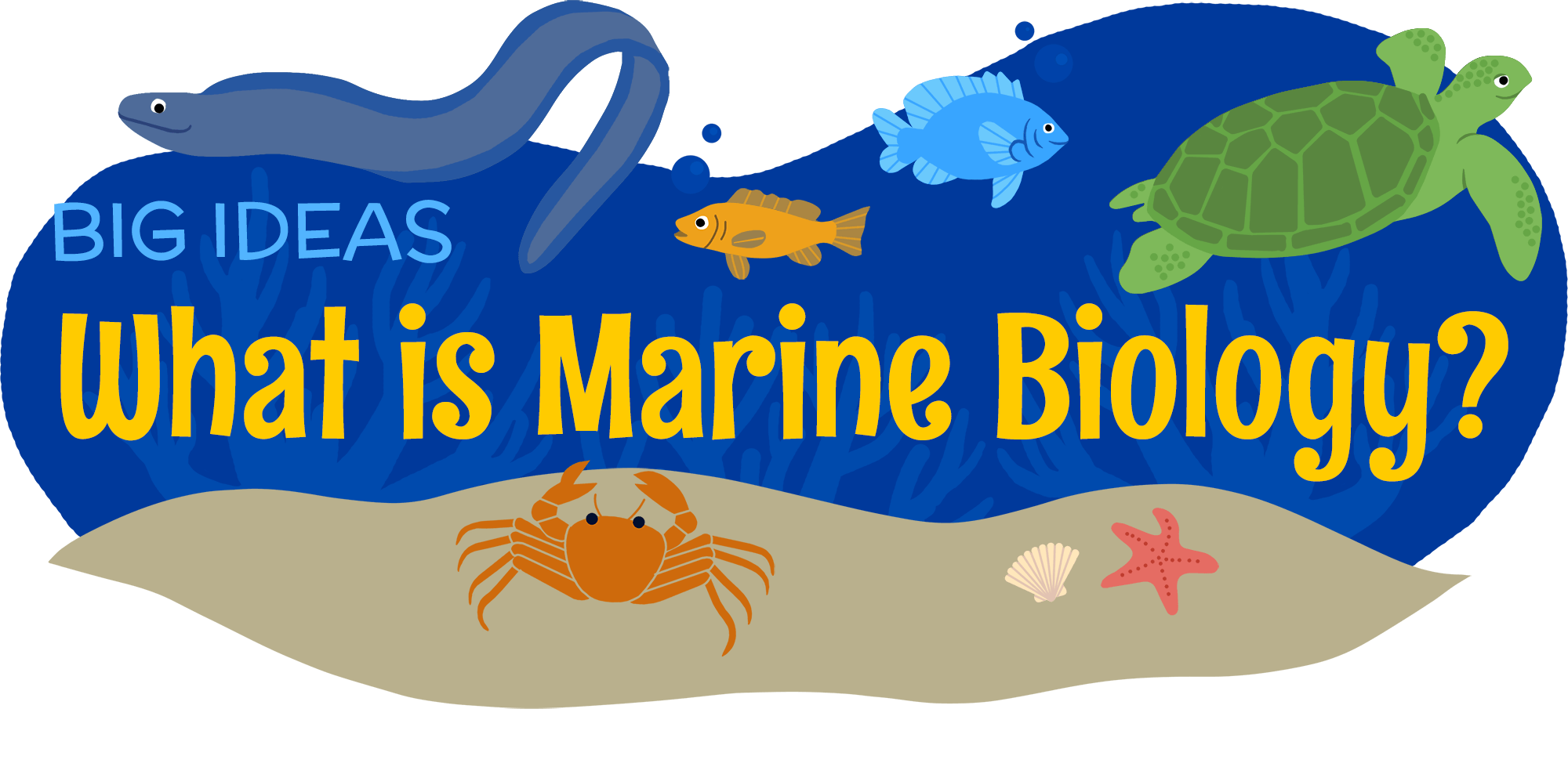Marine biologist clipart 1 » Clipart Portal.