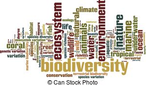 Marine biodiversity Vector Clipart EPS Images. 99 Marine.