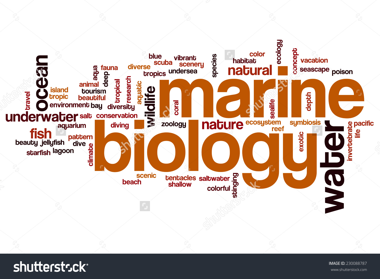 Marine Biology Clipart.