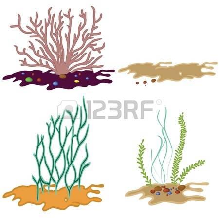 225 Marine Biodiversity Stock Vector Illustration And Royalty Free.