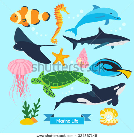 Marine Life Stock Photos, Royalty.