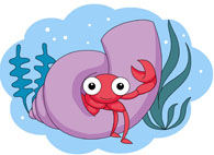 Free Marine Life Clipart.