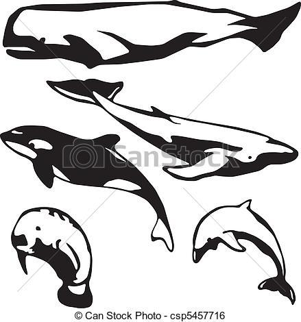 Clip Art Vector of Marine mammals.