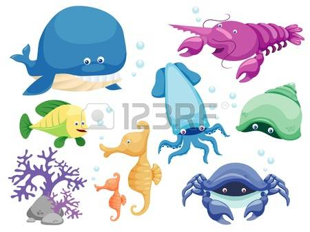 15,591 Marine Mammals Stock Vector Illustration And Royalty Free.