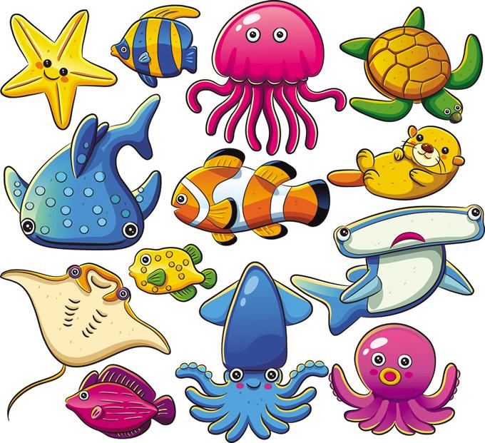Pictures Of Marine Animals.