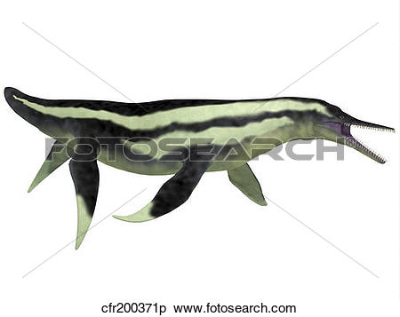 Stock Illustration of Dolichorhynchops marine reptile from the.