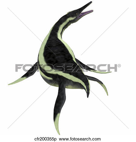 Stock Illustration of Dolichorhynchops marine reptile. cfr200355p.