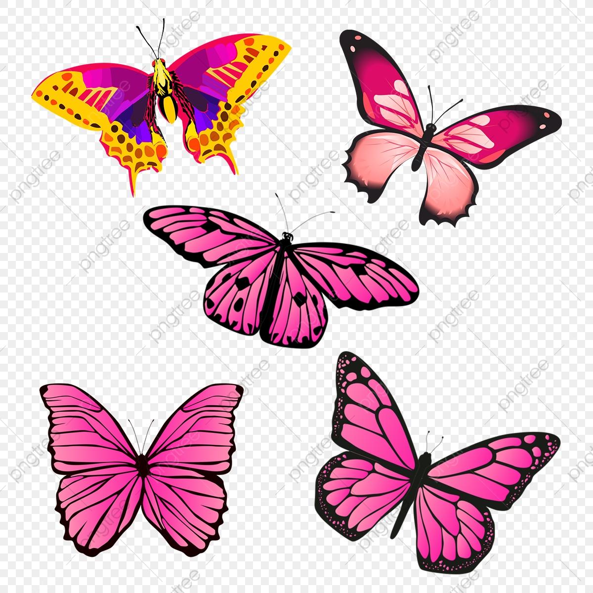 Mariposa Vector, Vector, Mariposa PNG Transparent Clipart.