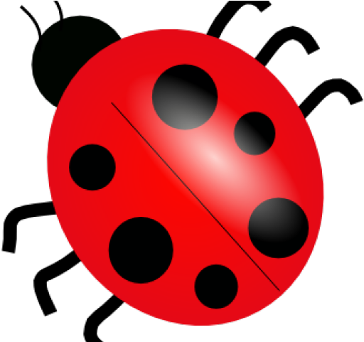 Ladybug Clipart Public Domain.