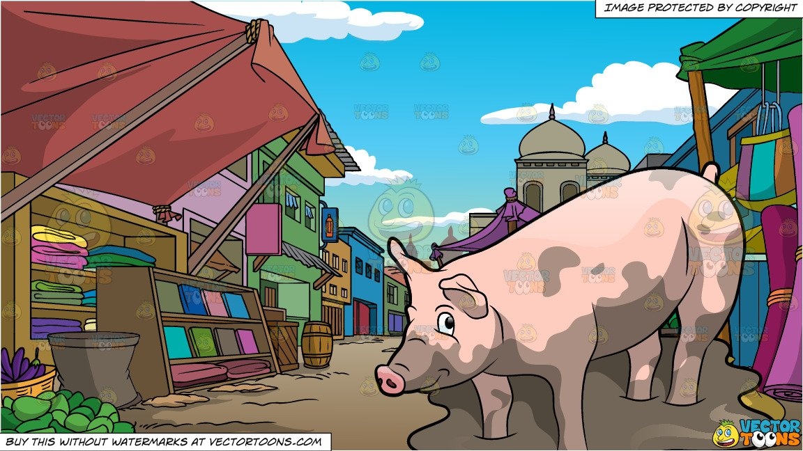A Cute Pig Playing In The Mud and An Indian Street Market.