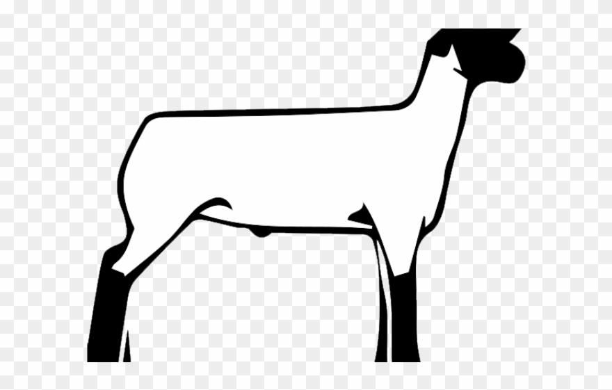 Lamb Clipart Club Lamb.