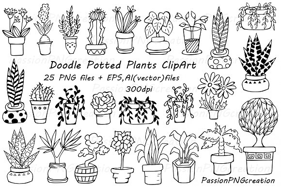 Doodle potted plants clipart ~ Illustrations on Creative Market.