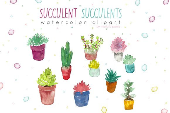 Watercolor clipart: succulents plant.