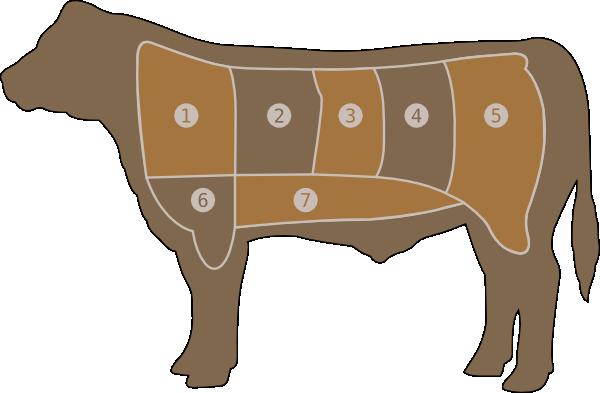 Beef Steer Clipart.