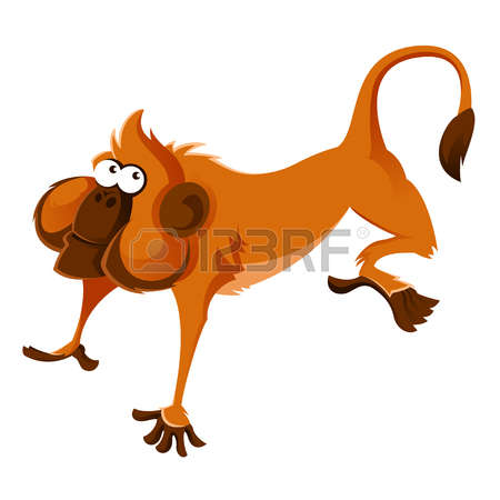 454 Marmoset Monkey Cliparts, Stock Vector And Royalty Free.
