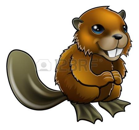 3,262 Beaver Stock Illustrations, Cliparts And Royalty Free Beaver.