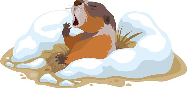 Groundhog Day. Marmot climbed out of hole and yawns Clipart.