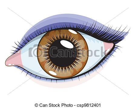 Vector Clip Art of Brown eyes with makeup on a white b.