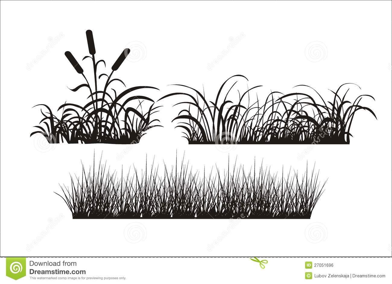 Clipart marsh grass.