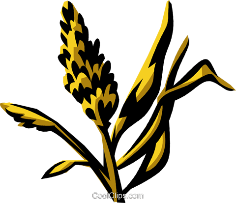 marsh grass Royalty Free Vector Clip Art illustration.