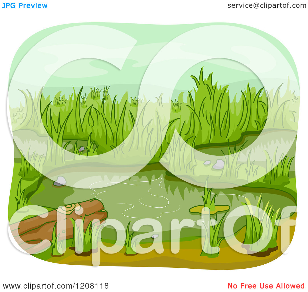 Cartoon of a Wetland Pond with a Log.