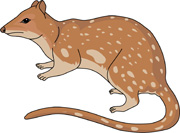 Free Marsupial Clipart Pictures.