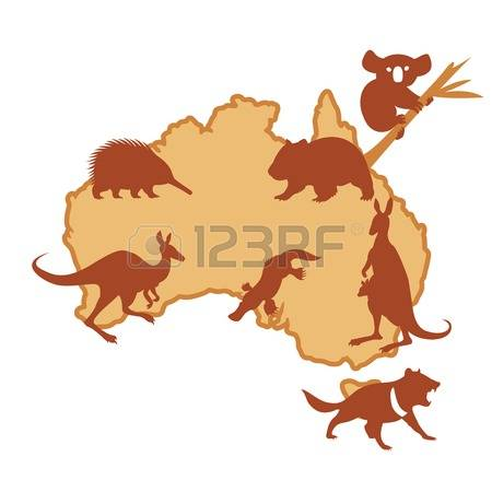 3,596 Marsupial Stock Illustrations, Cliparts And Royalty Free.