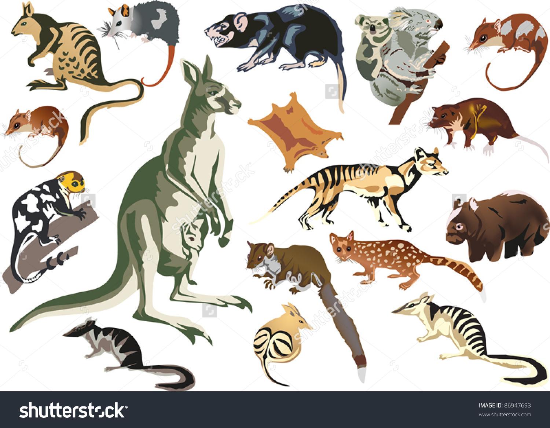 Illustration Set Marsupial Animals Isolated On Stock Vector.